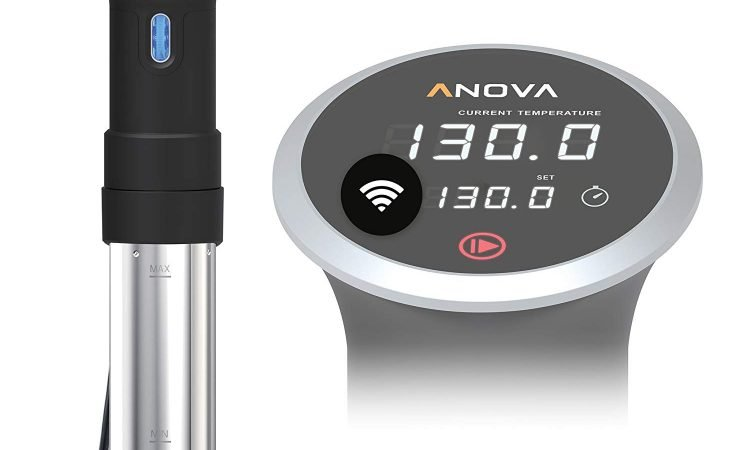 Best Sous Vide Immersion Circulator